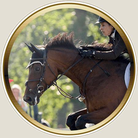 Lochside Lane Featured Horse: Ella