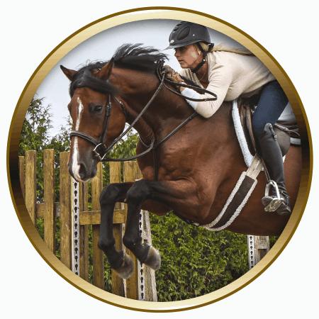 lochside-lane-horse-sales-victoria-huxley-featured-450x450