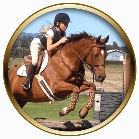 lochside-lane-horse-sales-victoria-desiree-featured-450x450