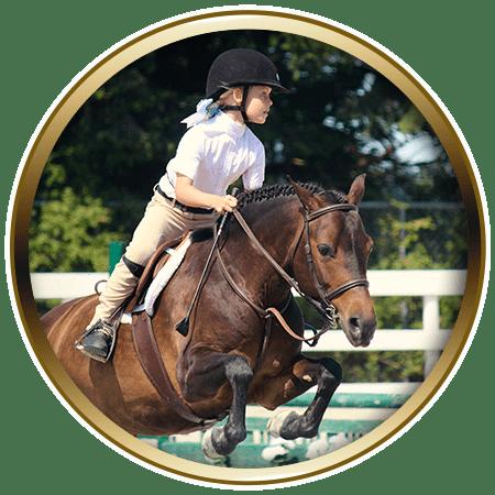 lochside-lane-horse-sales-victoria-petunia-featured-450x450