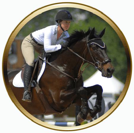 lochside-lane-featured-horse-sale_zara