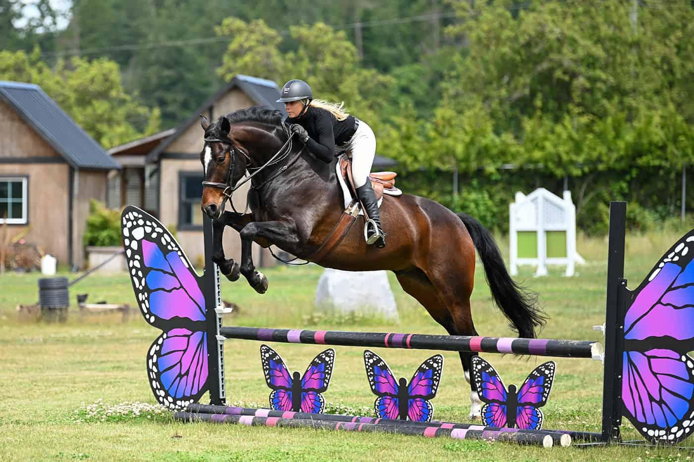 Lochside Horse Slider